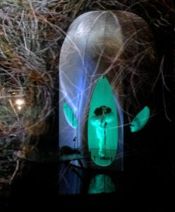 Björk performs her latest concert inside this high-tech cocoon | Fast Company